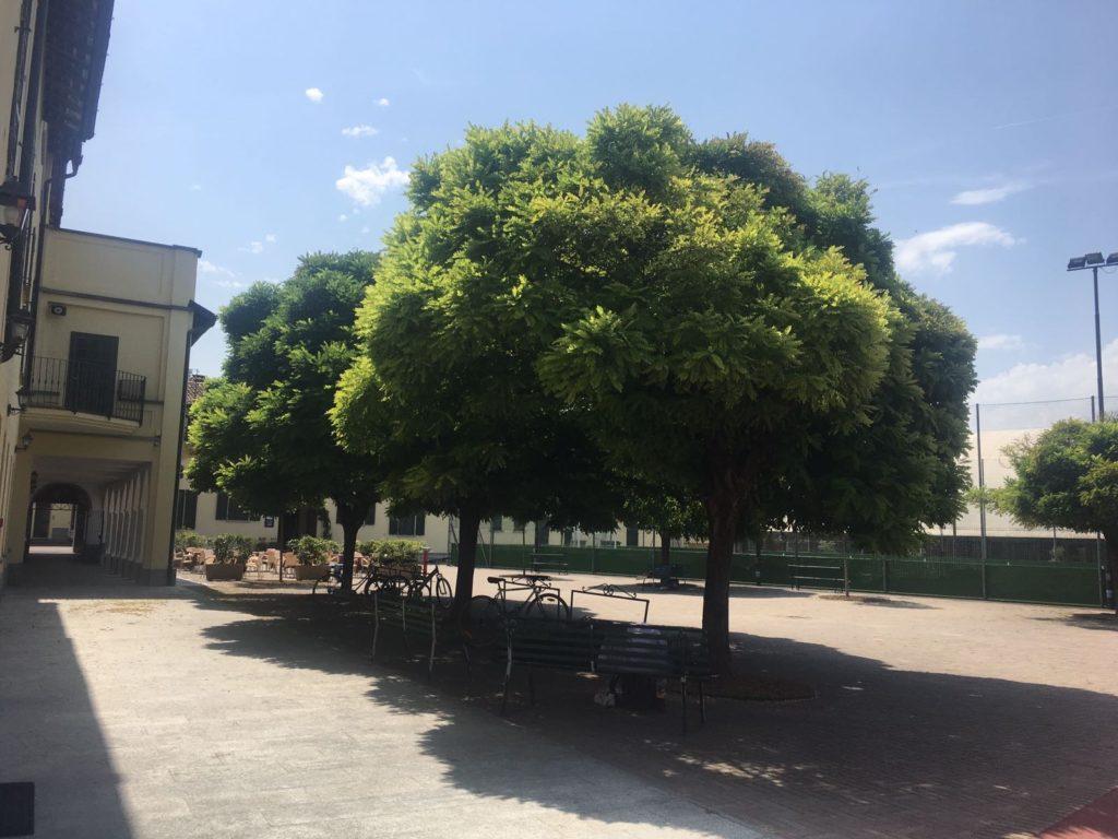 Il Centro San Luigi